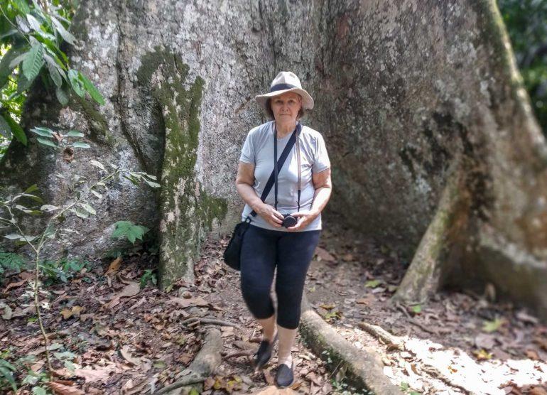 Kamerun sademetsässä