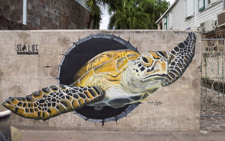 Nevis Saint Kitts ja Nevis 30 parasta trooppista saarta