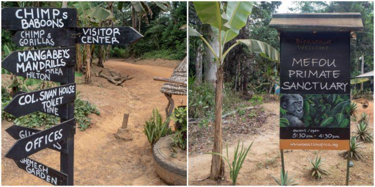 Kamerun Mefou