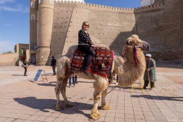 Bukhara kameli matkabloggaajan päivä