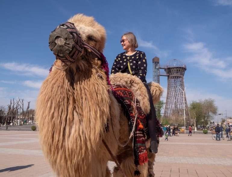 Bukhara kameli