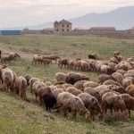 Keski-Aasia – hintoja, hotelleja ja huomioita