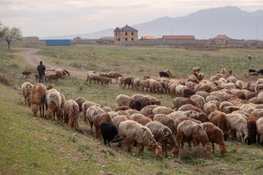 Keski-Aasia kustannukset feature