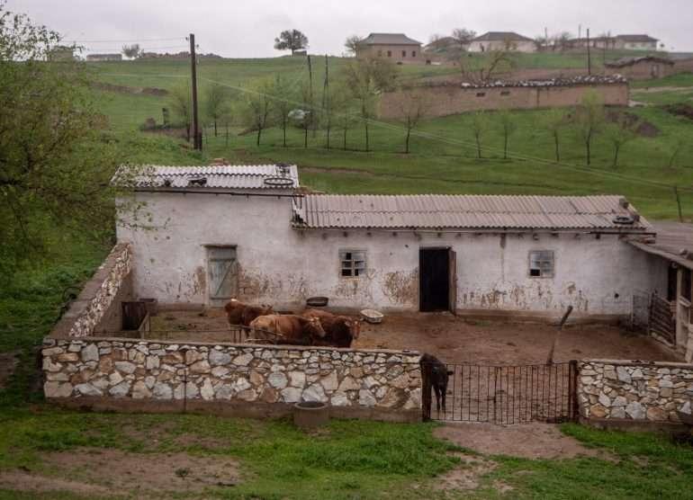 Uzbekistanin maaseudulla