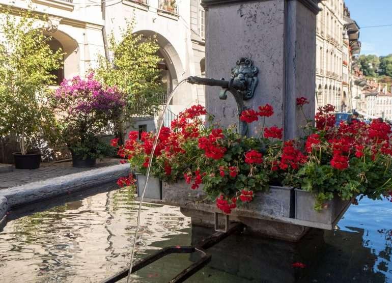 Suihkulähteet Bern