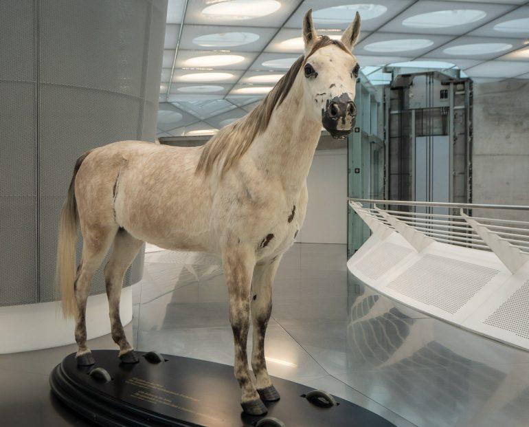Hevosista autoihin Stuttgart