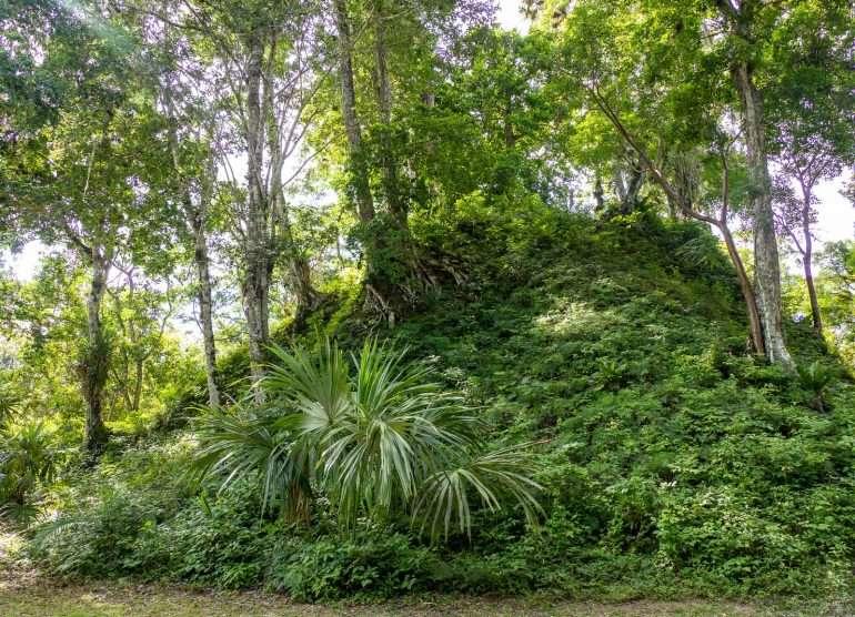Tikal Complex Q