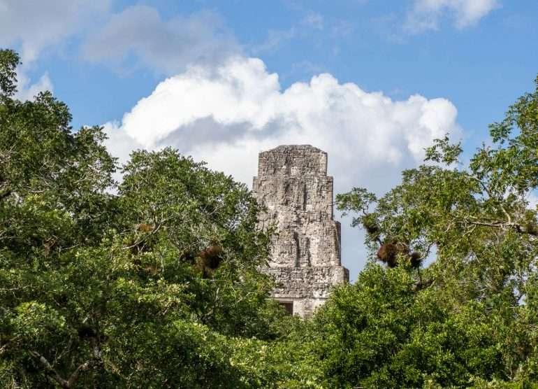 Temppeli III Tikalin mayaraunioilla