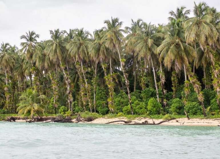Zapadilla Bocas del Toro Panama