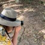 Bijolon apinapuisto Gambiassa