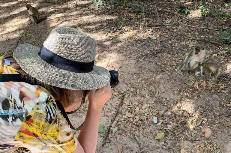 Bijolo Monkey Park