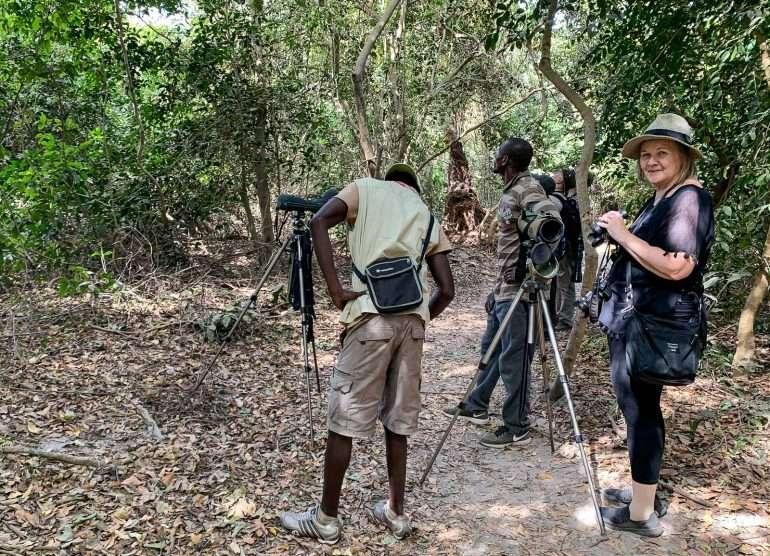 Gambia linturetki