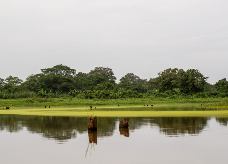 Embera Quera Panama
