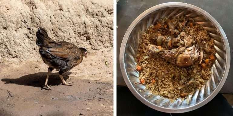 Kana ja kanaa lautasella