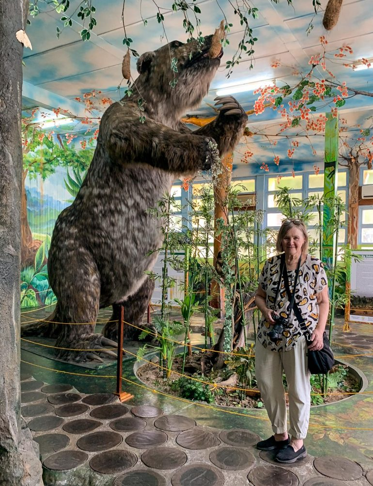 Jättiläislaiskiainen Guyana Guyanan oudot eläimet
