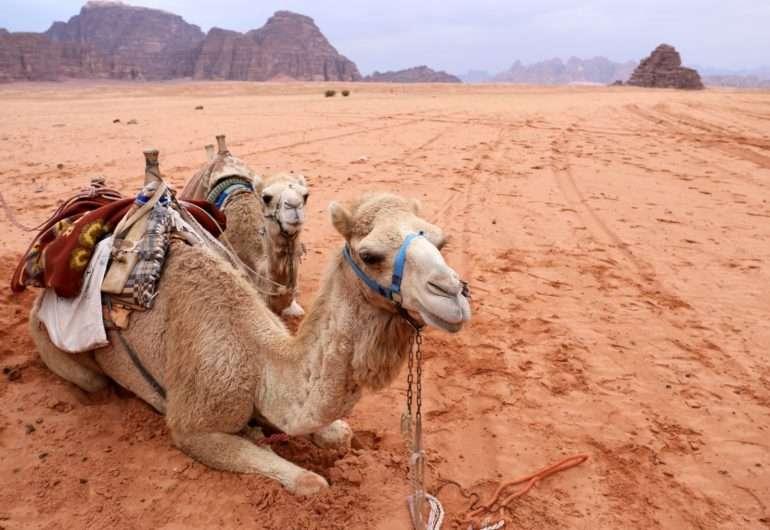 Wadi Rum Maat ilman pääkaupunkia