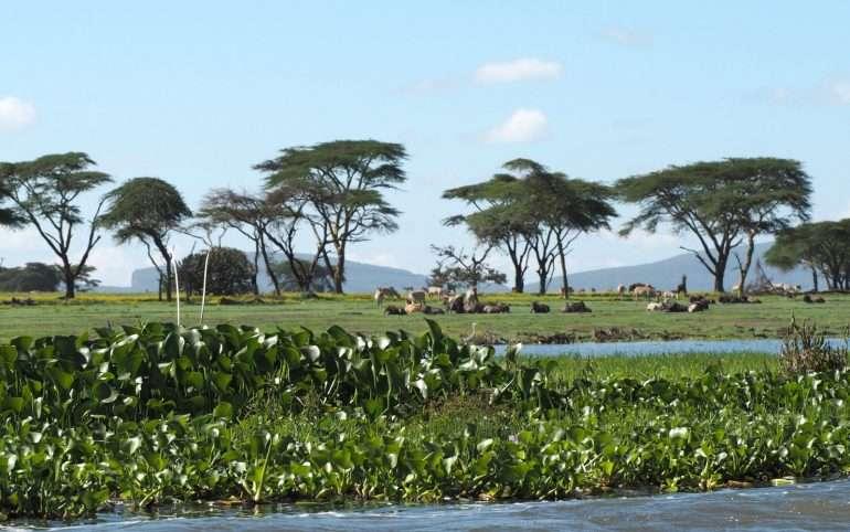 Crescent Island Cristo Rei Itä-Timorissa Kaukomatkaunelmia