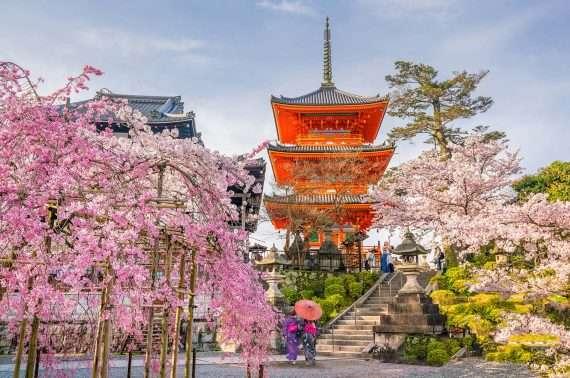 Tokio fea