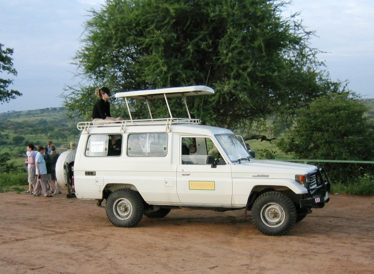 Safari-automme kohteena Serengeti