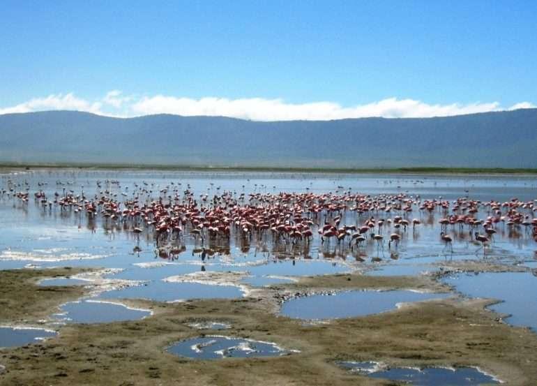 Ngorongoro Tansania kohteena Serengeti