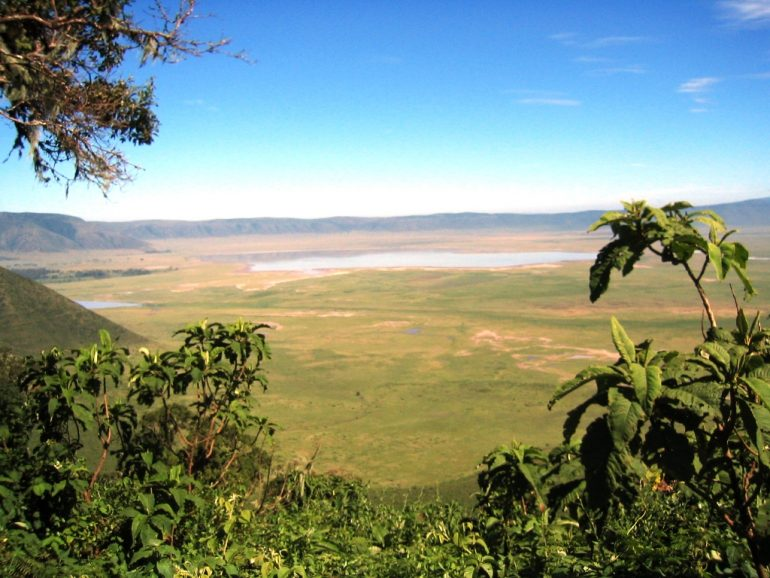 Ngorongoro reitin varrella kohteena Serengeti
