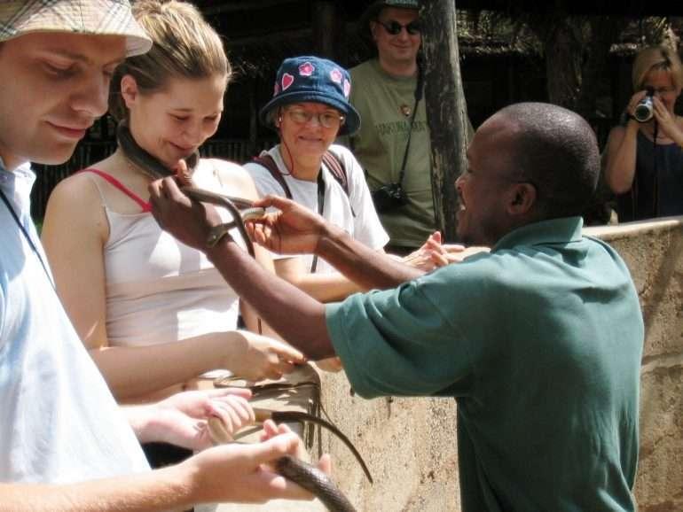 Tansania Käärmeitä - turvallisesti erillisessä matelijapuistossa