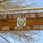 Nuoruusvuosieni matkaunelma: Serengeti