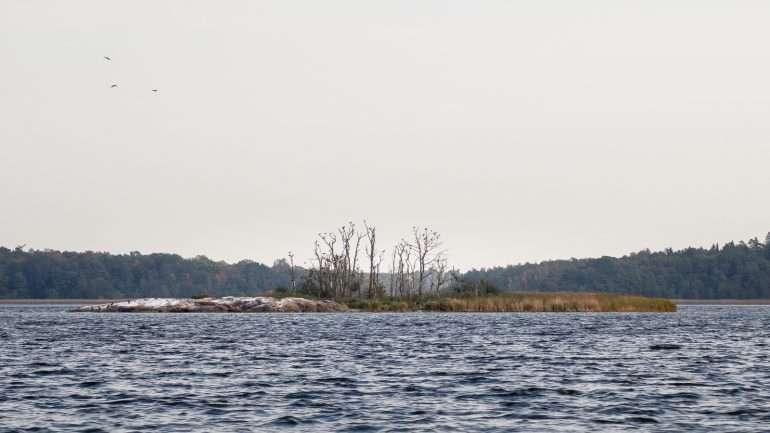 Tammisaaren saariston kansallispuisto
