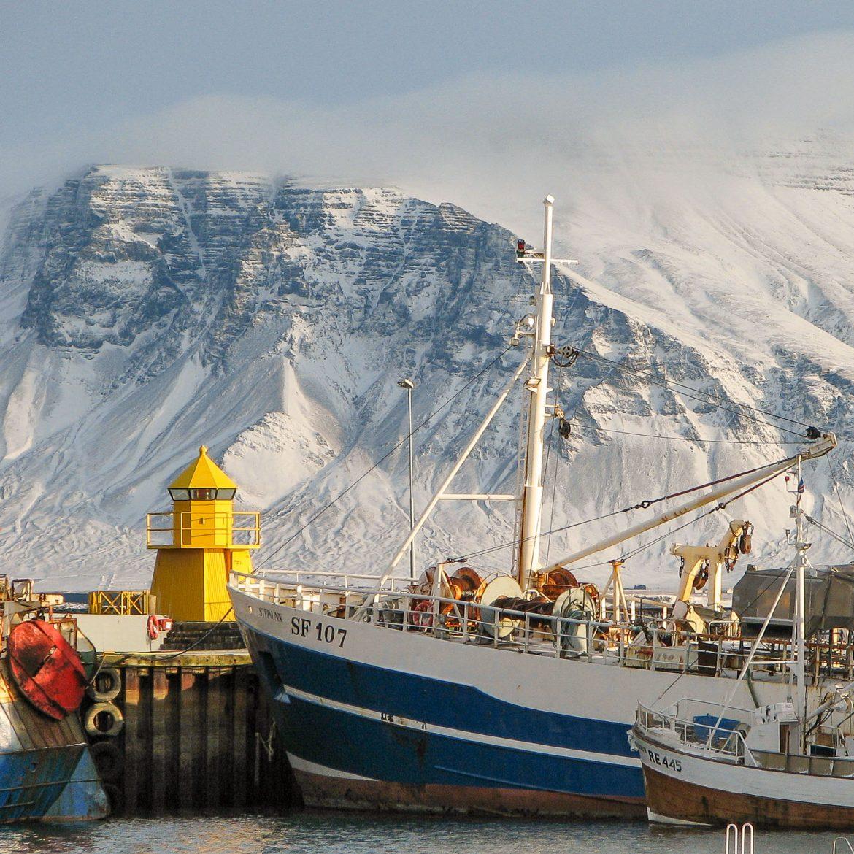 Islanti 2005