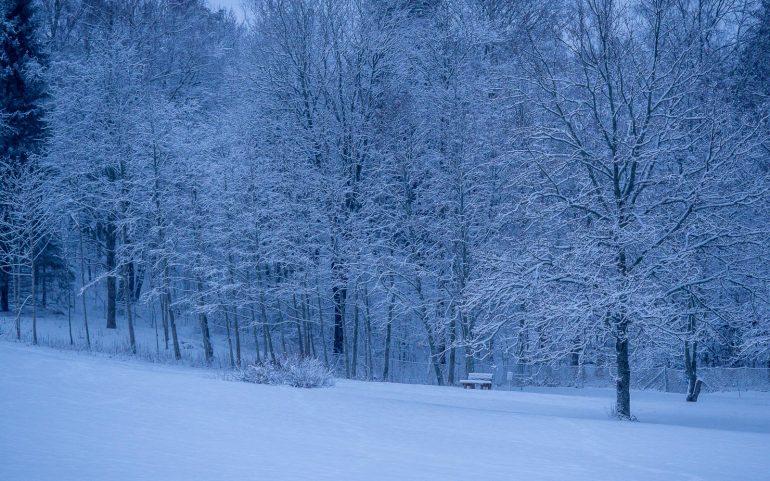 Luminen aamu