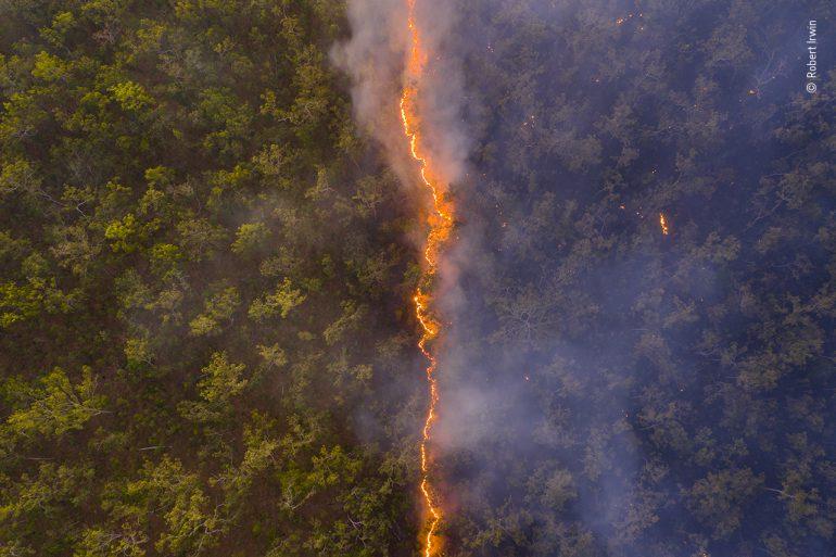 Bushfire, Australia © Robert Irwin, Wildlife Photographer of the Year