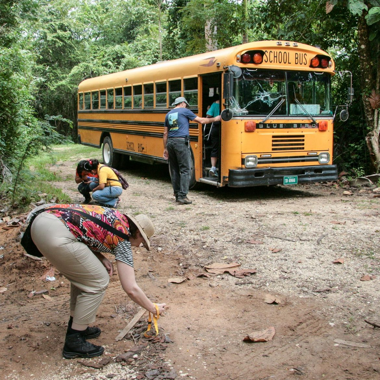 72 Belize Maat 65-80