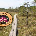 Kukkiva Valkmusan kansallispuisto