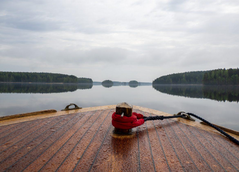 Norpparetki Järvisydän