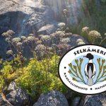 Selkämeren kansallispuisto