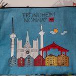 Trondheim – koe ainakin nämä